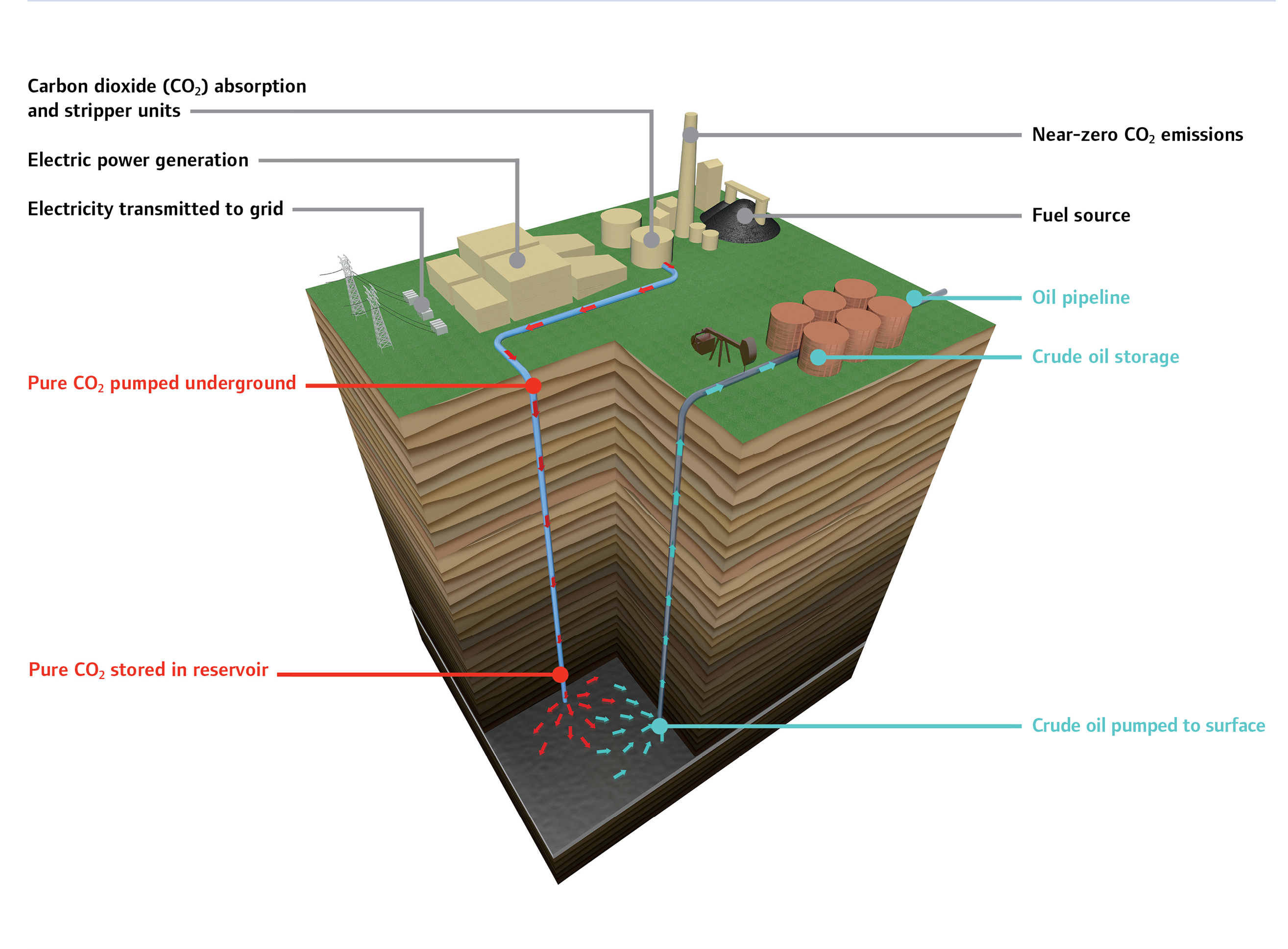 Carbon Capture, Use and Storage
