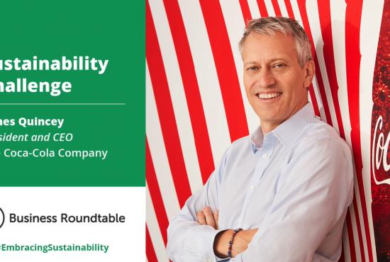 Coca-Cola Company Sustainability Challenge
