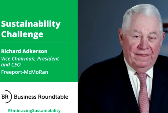 Freeport-McMoRan Sustainability Challenge