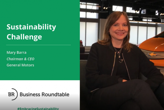 General Motors Sustainability Challenge