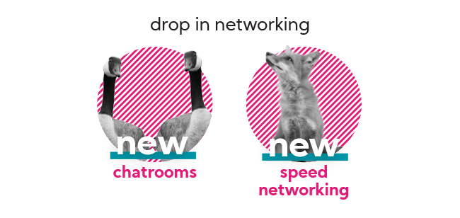 Drop-In Networking