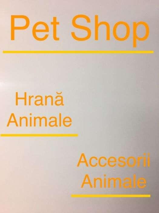 Pet Shop Buzau. Hrana Si Accesorii Animale. Oferte Speciale!