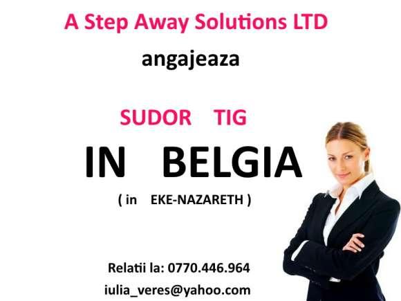 Angajam Sudor TIG - Belgia