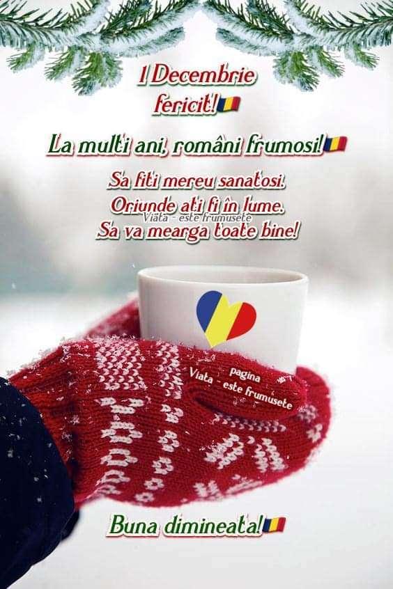 Despre Sortimente De Cafea De Calitate Cortina Cafe
