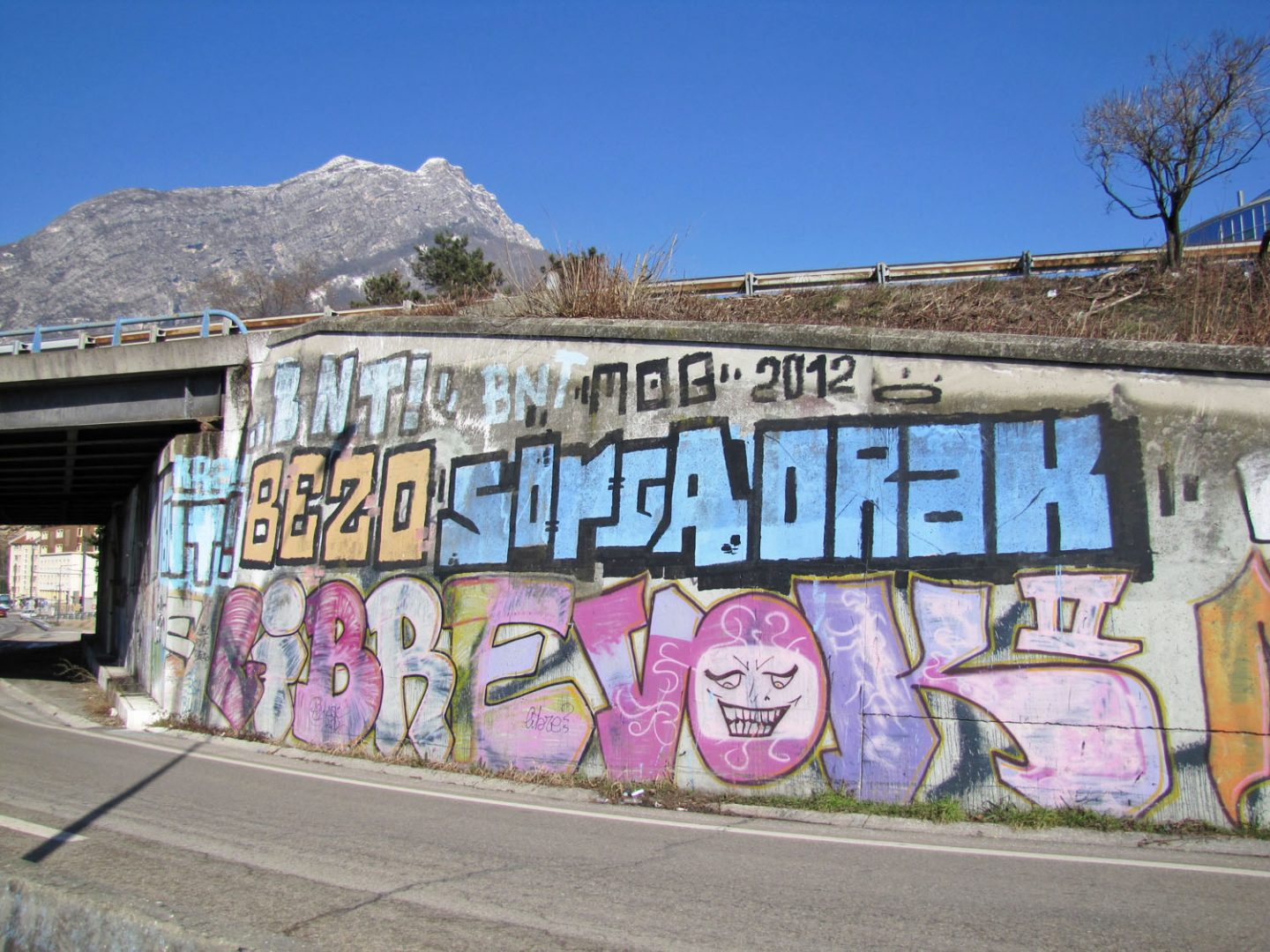 Grenoble - Vandals in the Alps