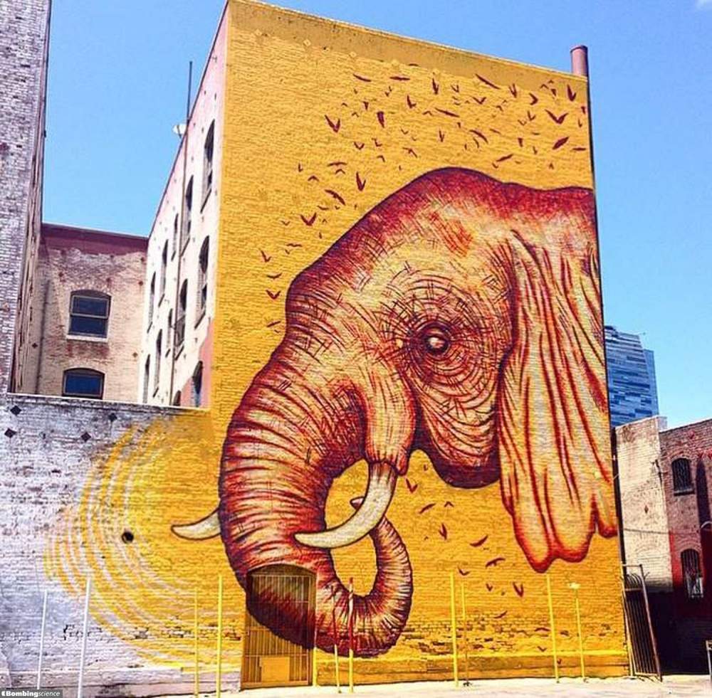 Jenna Morello / New York / Street Art