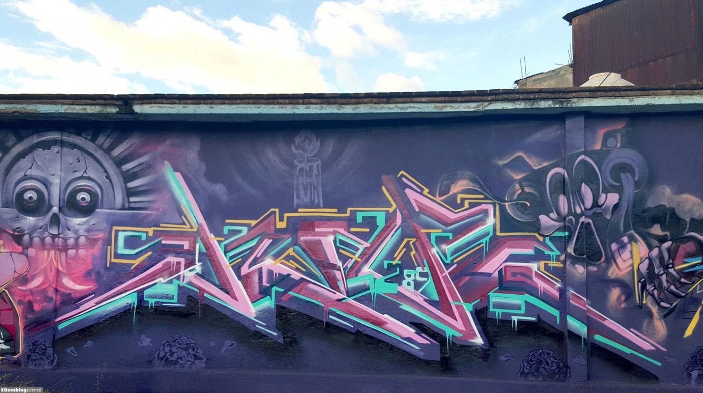 SKape289 / Oaxaca / Walls