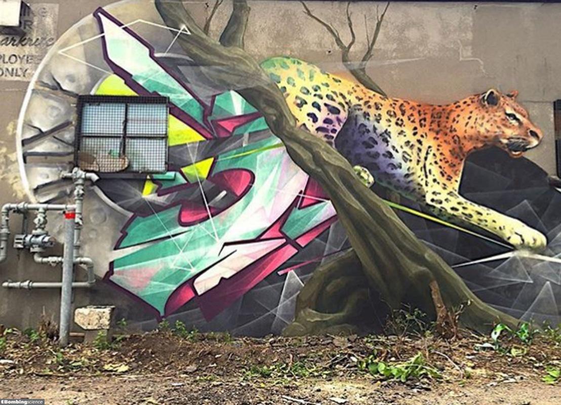 Zek / Montreal / Walls