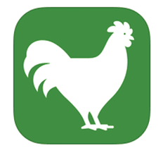 FlockPlenty – Chicken Egg Tracker