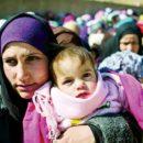 Muslim Refugees Seek the Truth