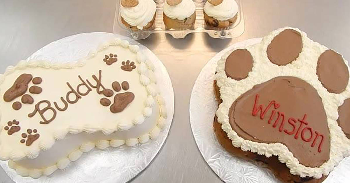 Strange Toronto Cant Stop Buying Cakes And Cupcakes For Their Dogs Funny Birthday Cards Online Drosicarndamsfinfo