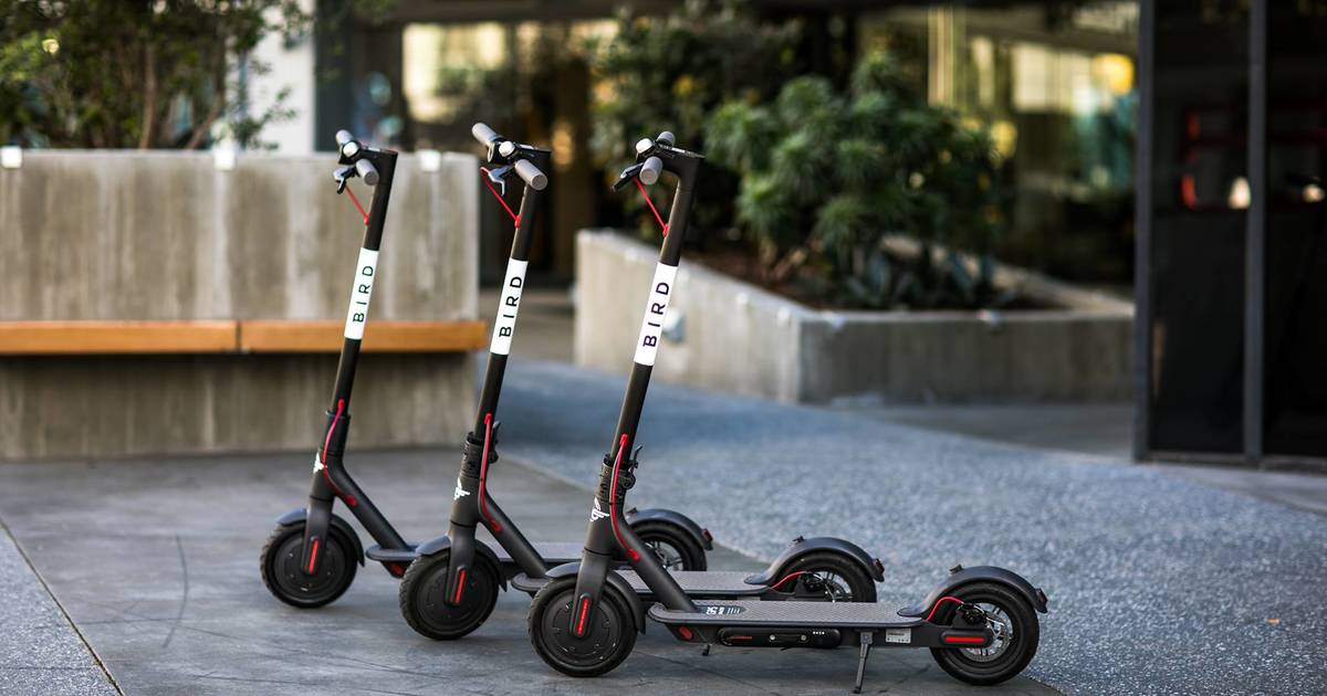 Toronto could soon ban shared e-scooters in the city