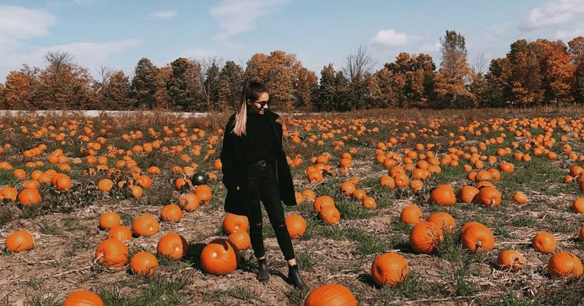 How to spend 36 hours in Clarington this fall