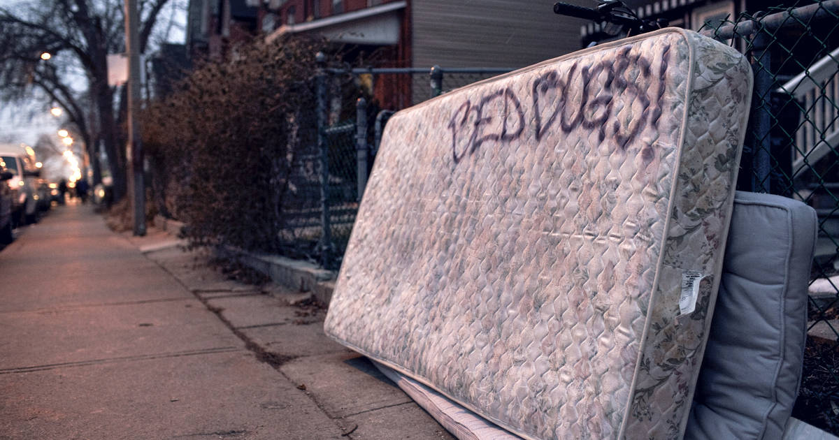 Toronto Is Officially The Worst City In Canada For Bed Bugs