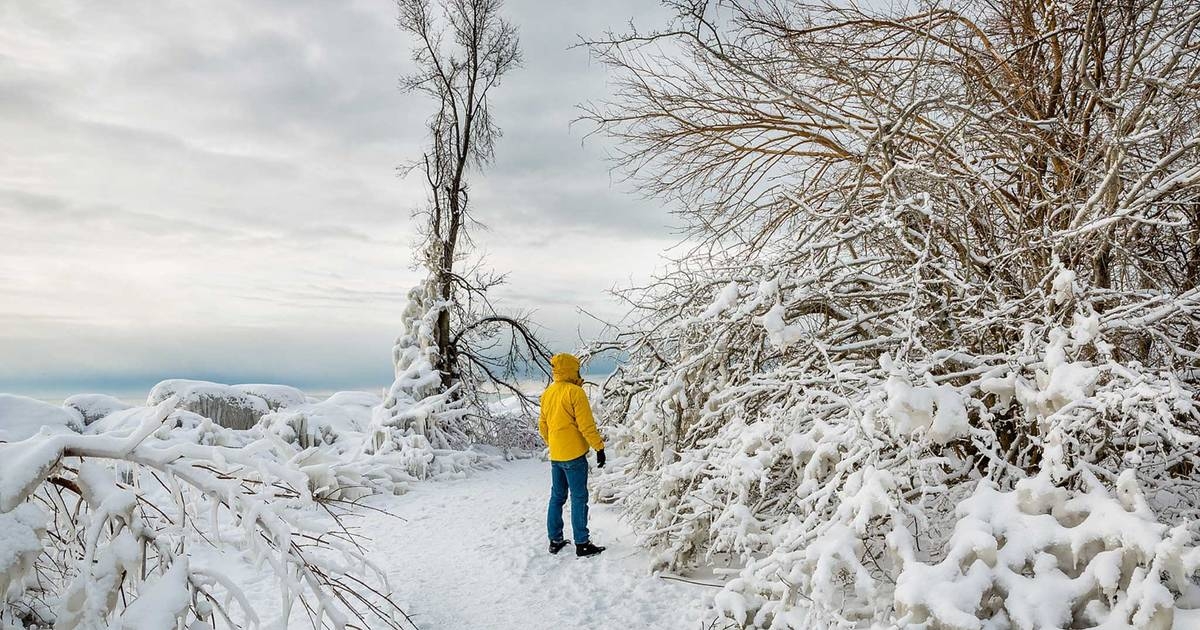 10 ways to have fun in the snow in Toronto this winter