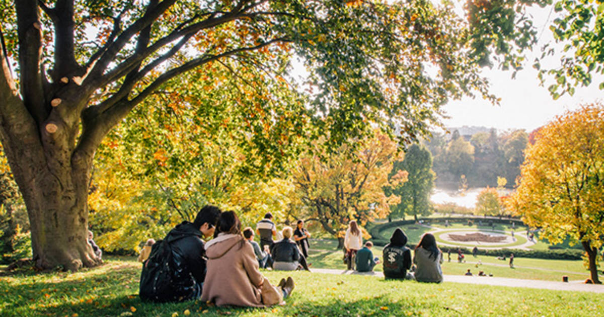 50 things to do this fall in Toronto 2014