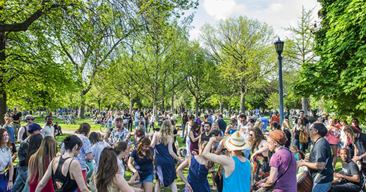 This Is What Trinity Bellwoods Looks Like On A Weekend