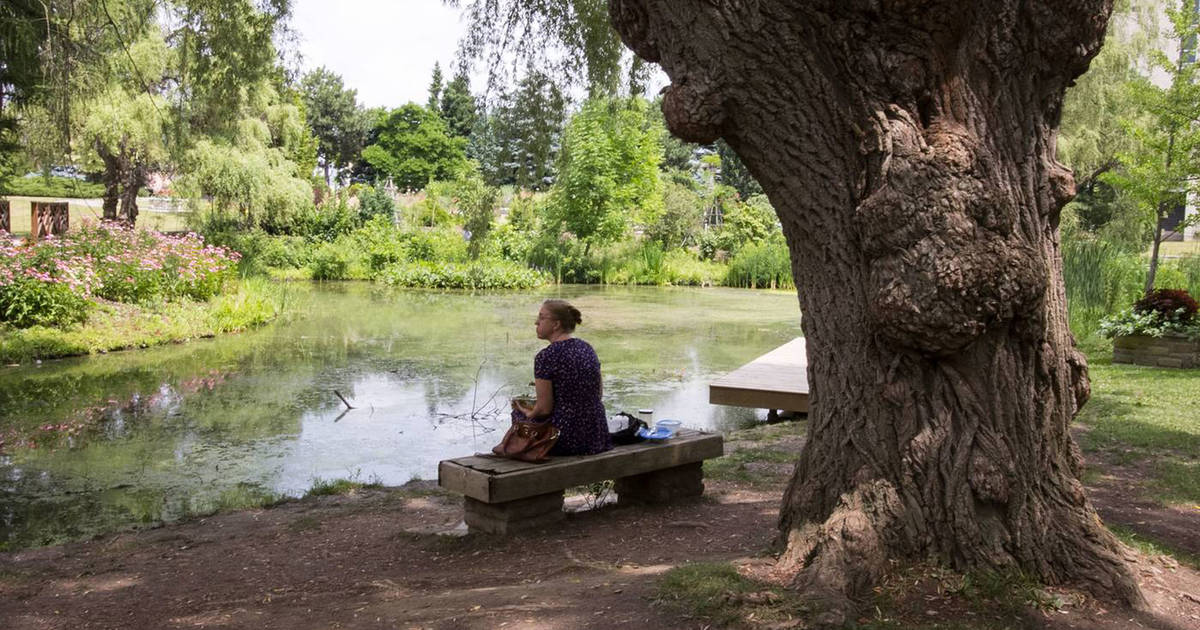 The 10 most serene spots in Toronto