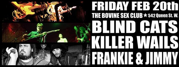 Blind Cats Killer Wails Frankie Amp Jimmy The Bovine