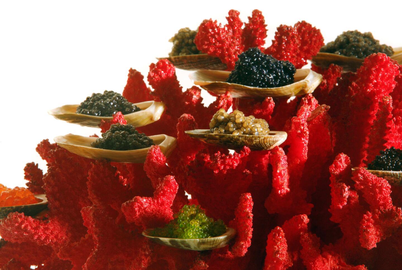 Coral Caviar from Tru