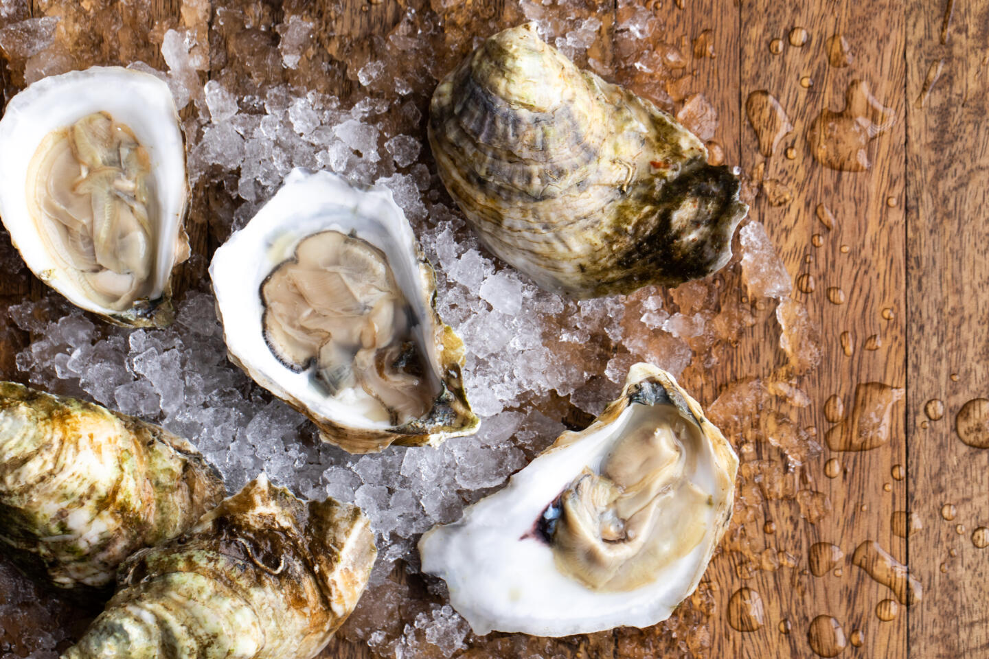 Shaw's Oysters