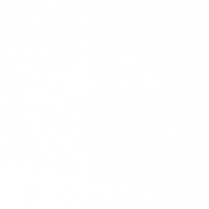 The logo of Bub City®