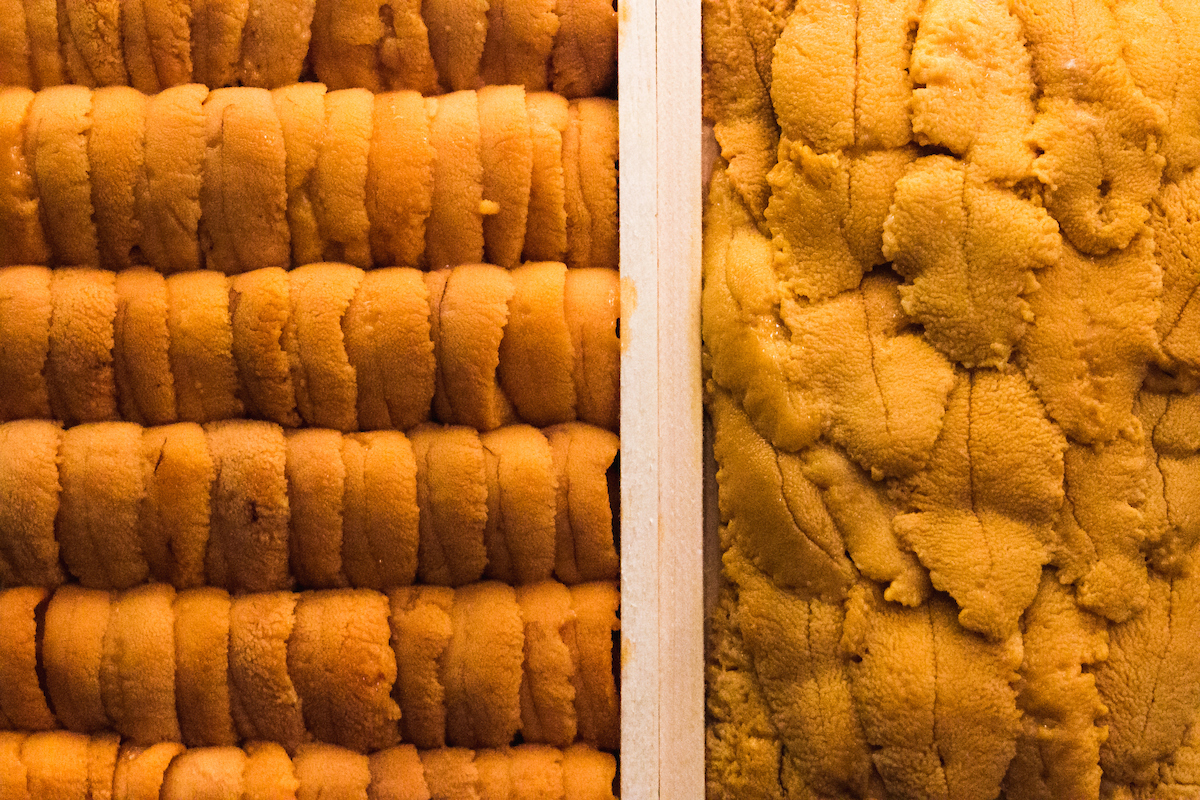 Two Types of Uni at Naoki Sushi