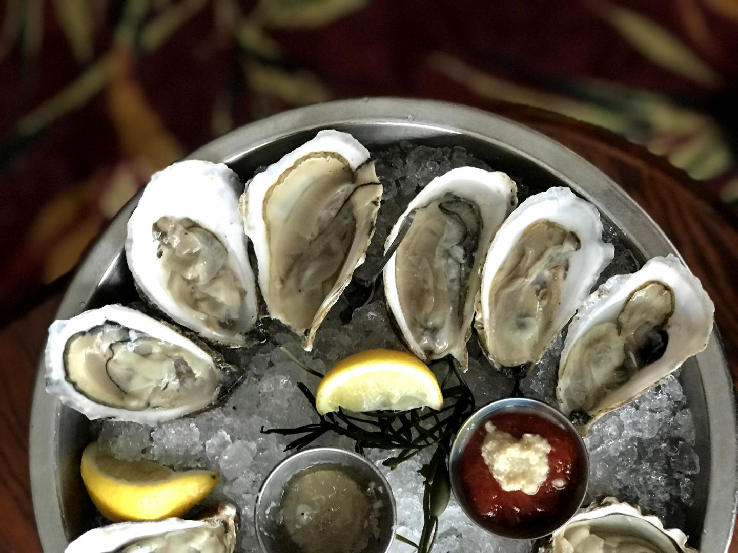close up of oysters on the half shell at shaw's