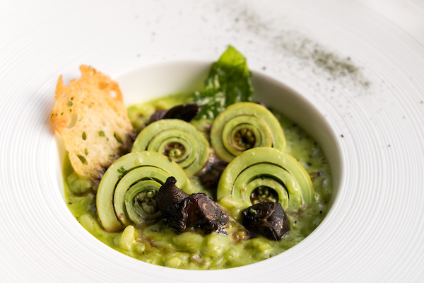 Fiddlehead Fern, Escargot Risotto