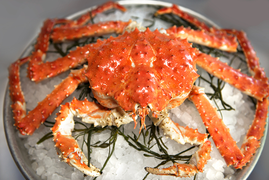 A crab on ice