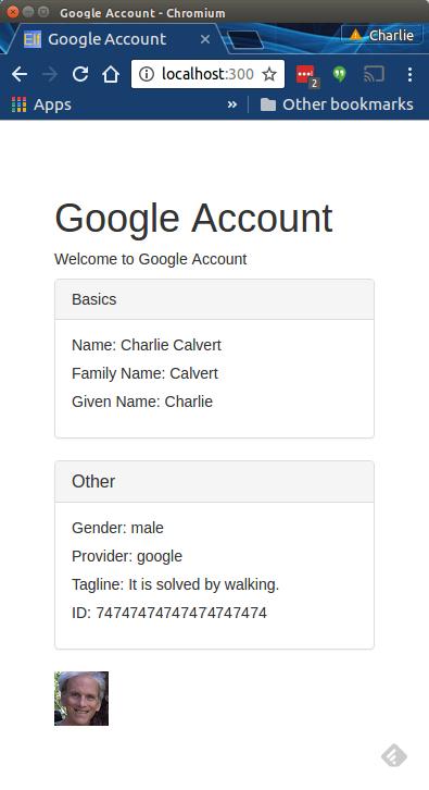 Google Account Display