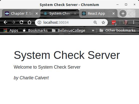 System Check Server UI