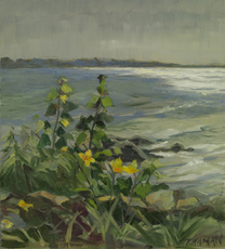 Gallery thumb 2.sandusky bay