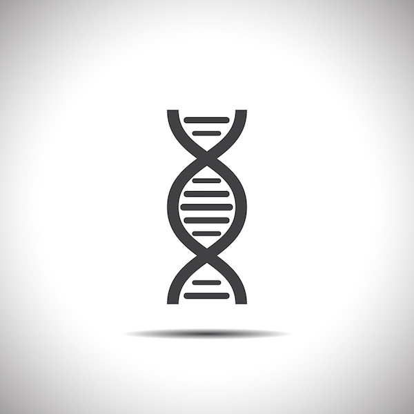 Diet, bacteria, and genome expression