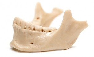 human history with tooth examination