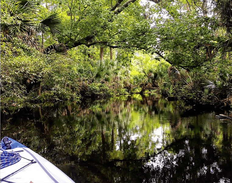 Discovering the real Florida on the Space Coast