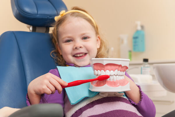Little girl is having her teeth examined by dentist. girl holding artificial teeth and brush and smiling