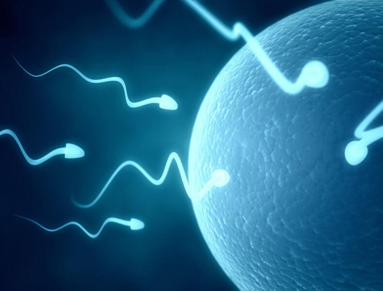 3D sperm selection on the horizon