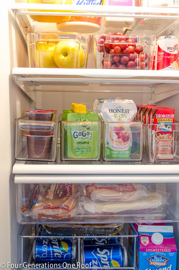 fridge kids