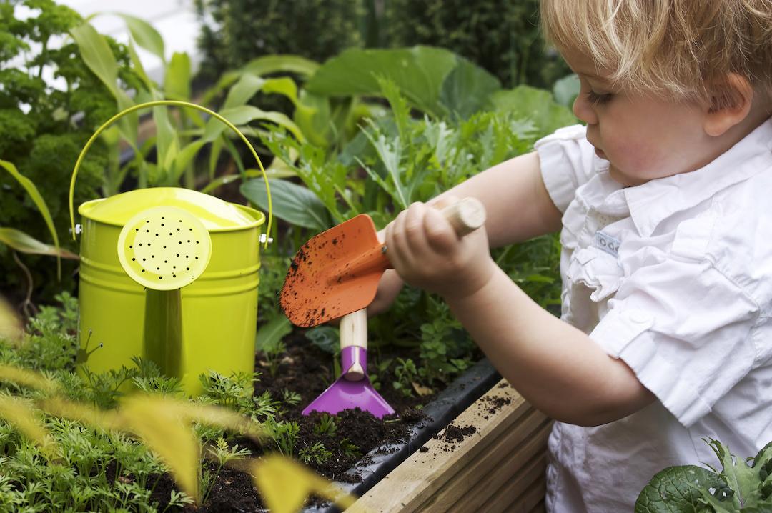 gardening with children in washington