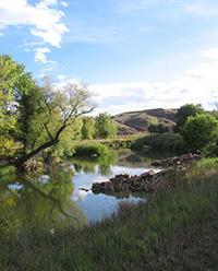 Poudre river trail