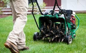 Lawn Areator