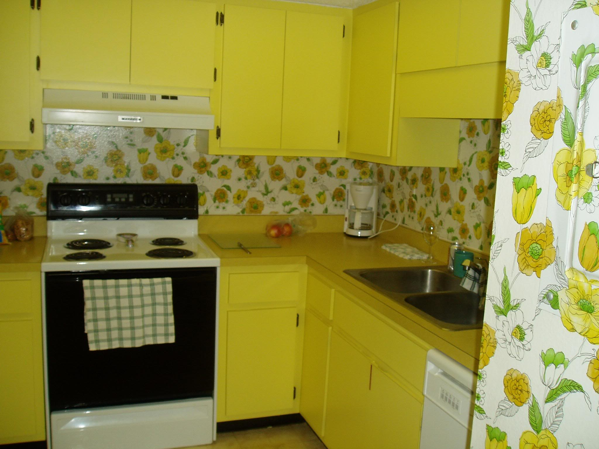 Things I hate about my kitchen: Quick fix or reason to move? | Homes ...