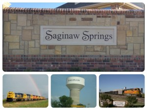 Saginaw Springs Collage