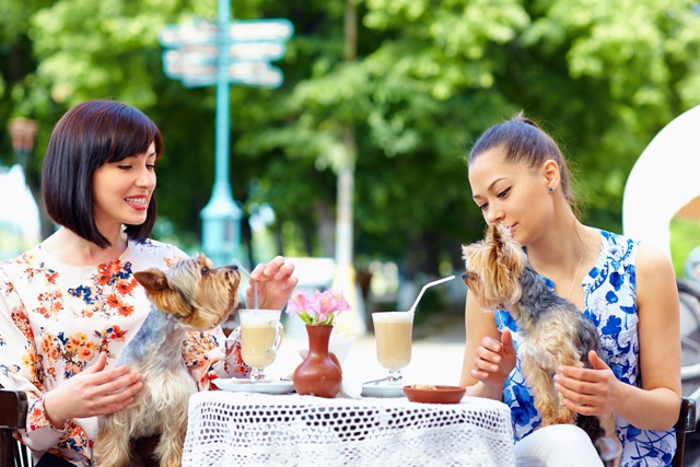 Pet and Dog Friendly Restaurants Oklahoma City