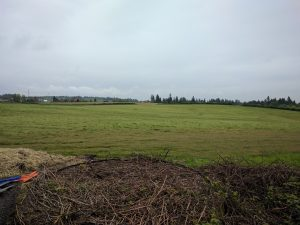Part of the 50 acres that were previously The Bartel Family Farm - plenty of room to grow Spudders here!