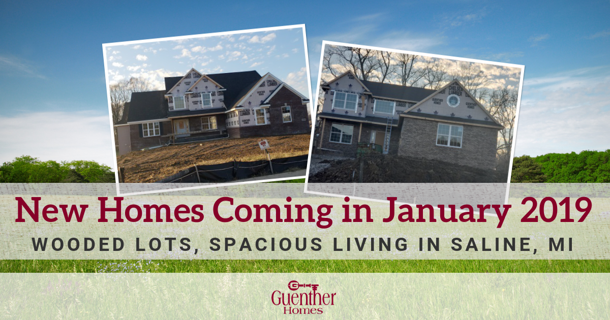 New Homes Coming In January 2019: Wooded Lots, Spacious Living In Saline, MI