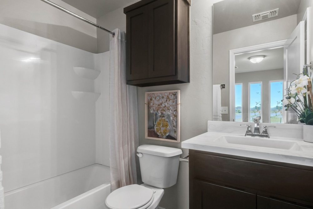 Small Bathroom Dark Cabinets