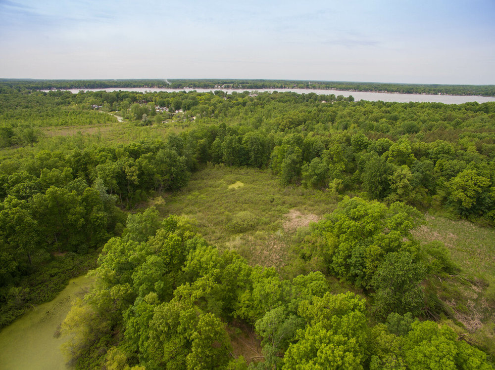 17.41 Acres Wooded Acreage For Sale Onsted, MI