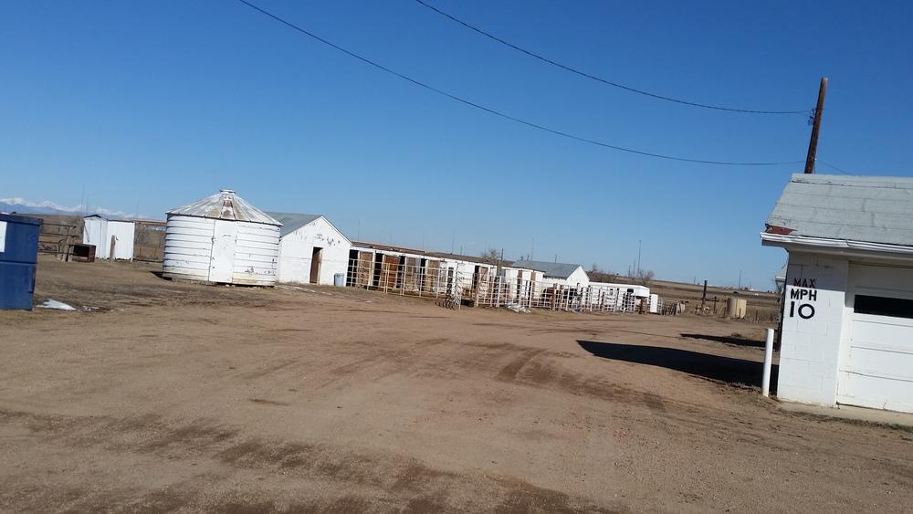 8.75 ac Development Land for Sale